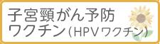 子宮頸がん予防ワクチン(HPVワクチン)